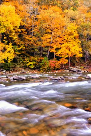 Fall on the South Fork of the Potomic